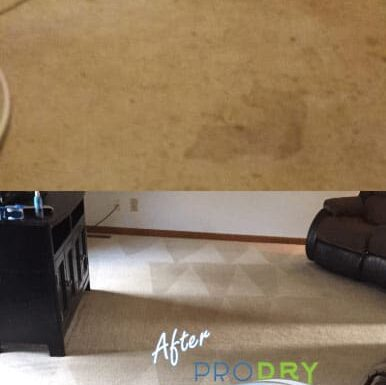 How to Select a Carpet Cleaning Company