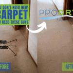 Oriental Rug Cleaners | ProDry Floor Care